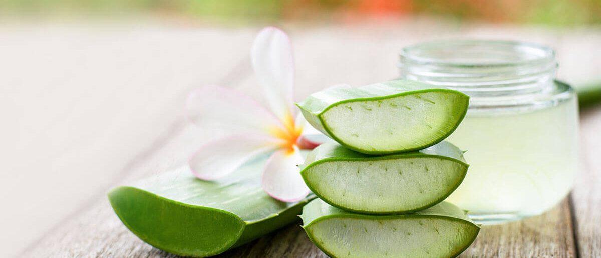 Aloe vera Creme mit besten Inhaltsstoffen