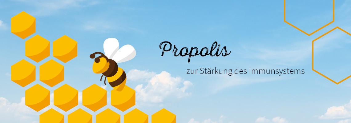 Propolis - Immunsystem unterstützen