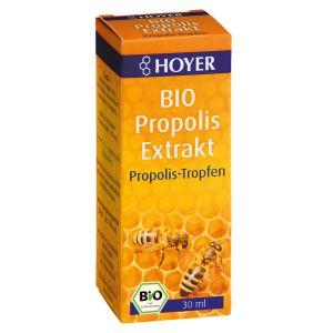Propolis Extrakt, flüssig BIO