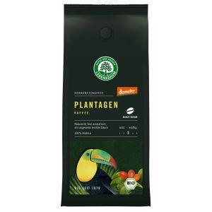Plantagen Kaffee, ganze Bohne