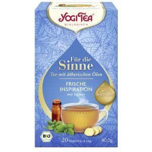 Yogi Tea® Für die Sinne Frische Inspiration (ehem. Pure Erfrischung)