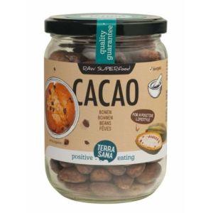 RAW Kakaobohnen