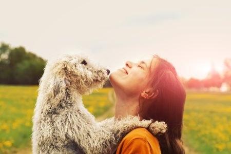 Hund und Frau im Sonnenuntergang auf einer Wiese