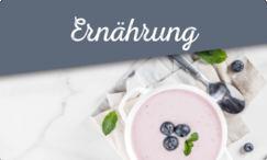 Aufsicht Joghurt mit Heidelbeeren auf weißem Tablöett